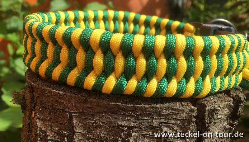 Halsband Teckel on Tour